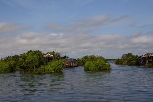 La desembocadura del río Tonle Sap en el lago del mismo nombre está plagada de vida y viviendas entre la vegetación flotante.