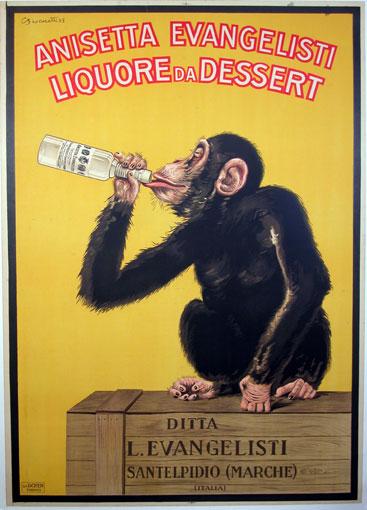 El anisete evangelista le sienta bien hasta al mono. Se lo bebe y luego se echa unas siestas de flipar.