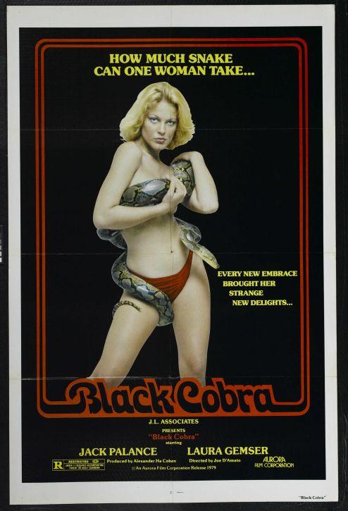 black_cobra_poster_01